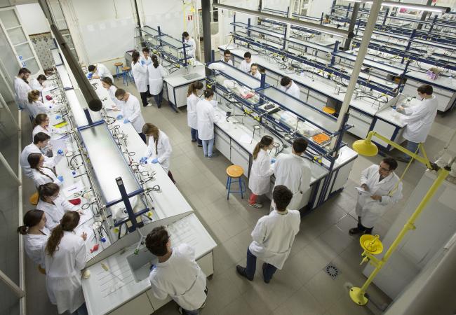 Undergraduate Program in Chemistry   IQS