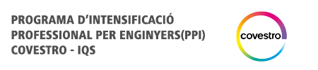 Program In Professional Intensification for Engineers (PPI)